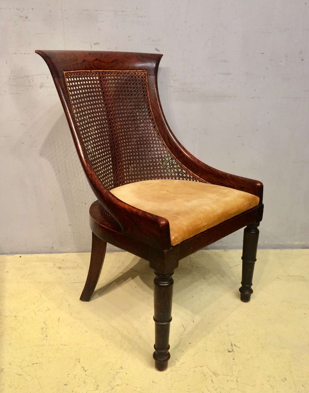 Regency simulated rosewood tub chair.